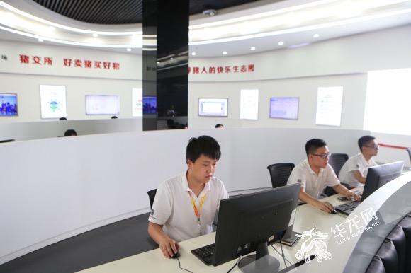 """【共舞长江经济带】借助""""互联网+"""" 全国每三"""